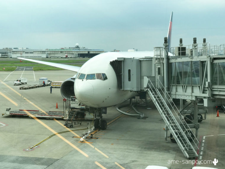 DL120 搭乗機